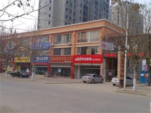 2015年山�|省公��T考��P��o�В�禹城年前�_�n