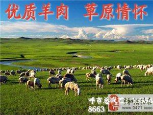 錫盟,巴盟優質羊系列產品廠家直銷,最優質量,最低價
