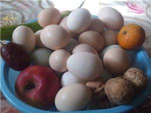 交城岭底村出售土鸡蛋