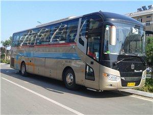 汽车旅游公司 53座豪华大巴 常年对外包车