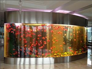 南通酒店海鲜池设计制作 南通家装观赏鱼设缸制作