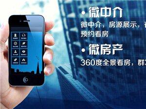 专业帮助企业商家微信营销