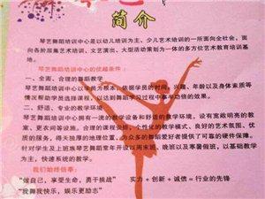 琴艺舞蹈培训中心常年招生!学期班即日起开始报名啦!