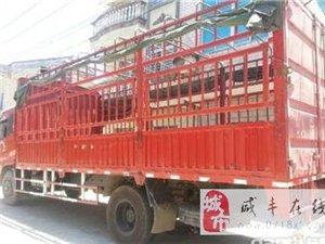 6.8米仓栏货车出租