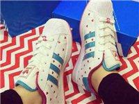 【adidas】三叶草