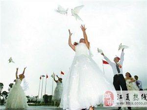 江夏鴿子放飛暖場文化藝術工作室
