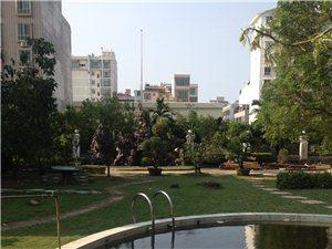 琼海市爱华东路金宝来1号馆后面780平方土地出售
