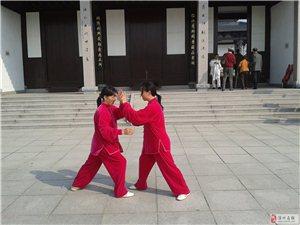 传统杨式太极拳培训班