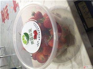 應季有機草莓上市了
