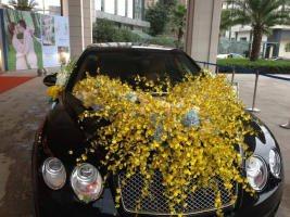 婚禮配車、婚車出租及旅游包車、長短期用車的汽車租賃