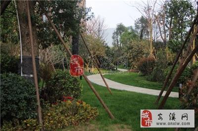 一期中庭园林景观3月份工程进度