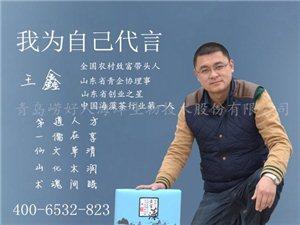 王鑫海藻养生茶