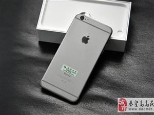 大屏果iPhone6Plus仅1500元