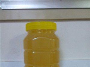 自养纯蜂蜜  欢迎品尝