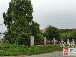 賣多顆榕樹、價格優惠、面議、地點:珠海三灶
