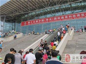 壽光蔬菜博覽會一日游報名電話15254327728