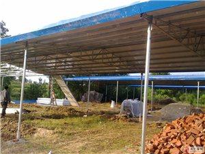 厂房,大小棚,钢结构制作,活动房,彩钢棚