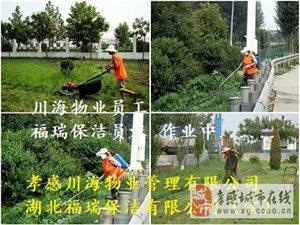 川海物業為您提供專業的物業管理及園林綠化服務