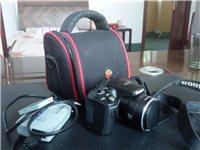 佳能相機SX500IS