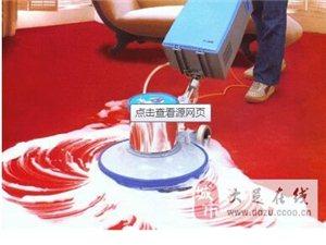 承接專業石材養護 地毯清洗