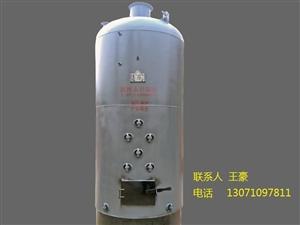 蒸馍锅炉养殖锅炉生物质锅炉