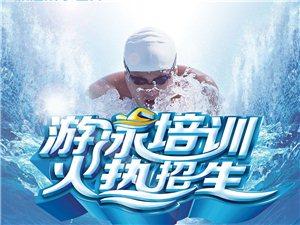 威尼斯水世界游泳班開始報名了!