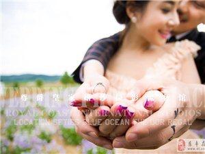 """威尼斯人线上官网薰衣草婚纱照—尊爵皇家首推""""爱的伊甸园""""婚纱照"""