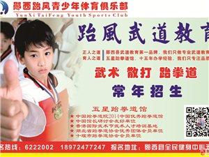 跆风青少年体育俱乐部常年招生