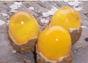 出售批發,零售松花皮蛋,鹽蛋,鹽皮蛋