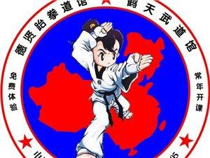 德賢跆拳道暑假訓練營