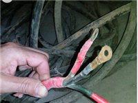 3芯电缆单芯6平方价格低