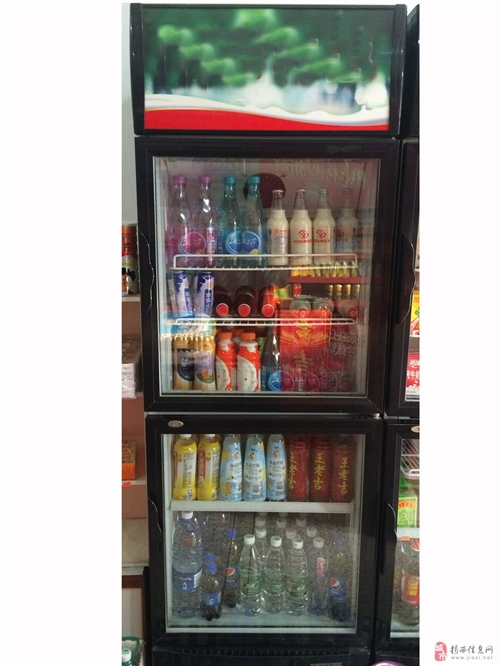 出2个八成新双门展示柜风冷冰箱