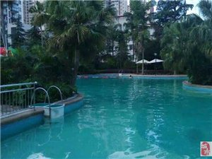 华地王朝五星级酒店花园泳池对外开放