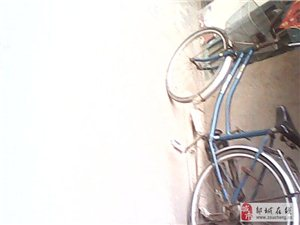 永久牌自行车一辆