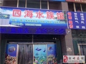 朔州張遼路四海水族館