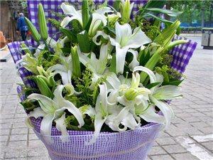 心语鲜花、资材批发、花艺培训