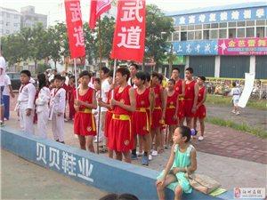 速成武术跆拳道中心暑假班火爆招生中