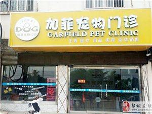 邹城加菲宠物门诊医院