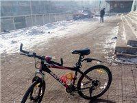 天津富士达山地自行车 - 1000元