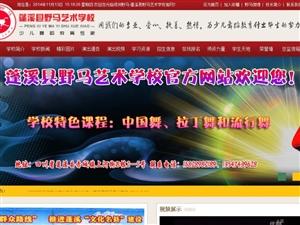 蓬溪县绿洲野马艺术学校