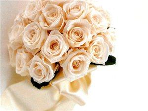 欣缘益团队,婚礼策划