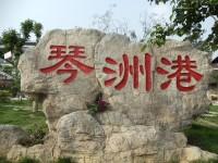 琴洲港乡村旅游度假村