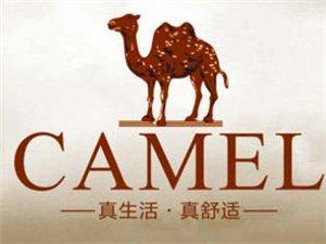 旺苍县骆驼专卖店