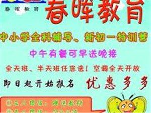 春晖教育暑期惊喜套餐:语、数、英、作文阅读、书法美术,全天班