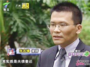 广州律师张志锋