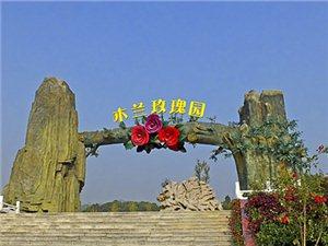 武汉木兰玫瑰花园