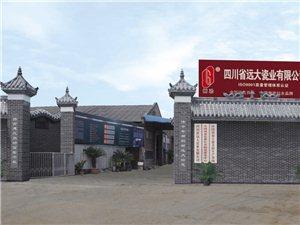 四川省远大瓷业有限公司