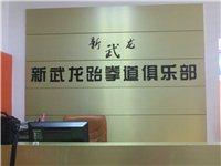 信丰新武龙跆拳道俱乐部