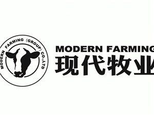 金沙国际网上娱乐官网奶之屋牛奶批发部现代牧业金沙国际网上娱乐官网销售