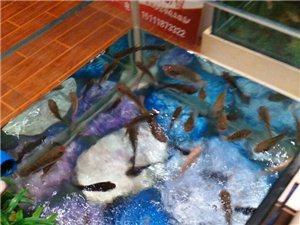 武胜鱼疗养生馆